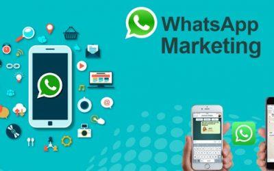 WhatsApp marketing, idee per il tuo prossimo caso di successo