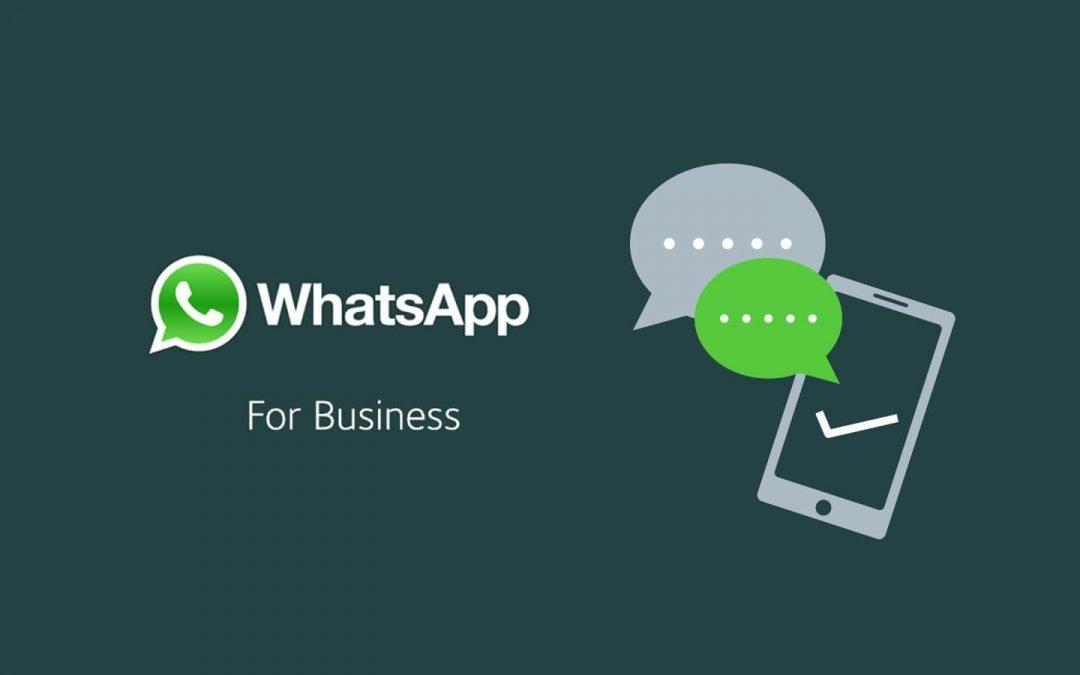whatsapp aziende