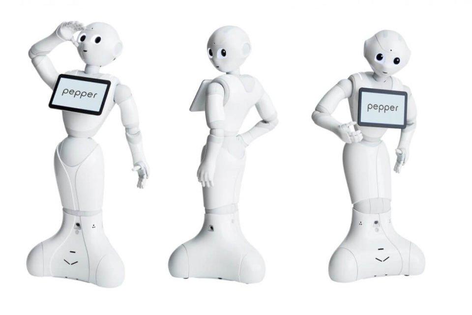 Pepper progetto SEI robot personal-trainer
